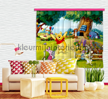 Winnie the pooh has a party vorhang Kleurmijninterieur vorhang top15