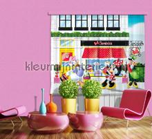 Minnie Mouse and Katrien Duck gordijnen Kleurmijninterieur meisjes