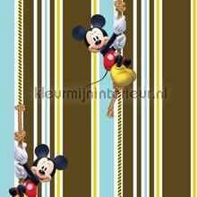 Mickey curtains Kleurmijninterieur teenager