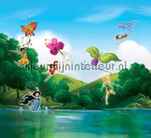 Fairies at the lake gordijnen Kleurmijninterieur meisjes