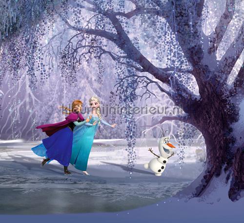 Frozen Anna en Elsa gordijnen Kidz Kleurmijninterieur ...