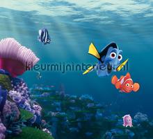Nemo en Dory curtains Kleurmijninterieur boys