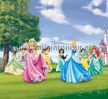 Princesses in the garden gordijnen Kleurmijninterieur meisjes