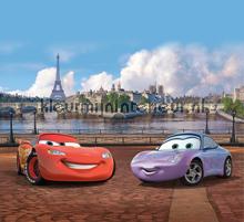 Cars in Paris curtains Kleurmijninterieur boys