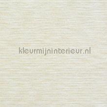 Logan alabaster tendaggio Prestigious Textiles tinte unite
