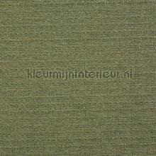 Logan celedon tendaggio Prestigious Textiles tinte unite