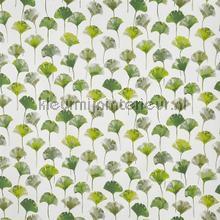 Camarillo cactus cortinas Prestigious Textiles romântico