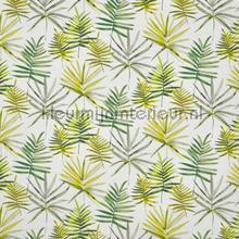 Topanga cactus rideau Prestigious Textiles romantique
