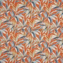 Ventura tango rideau Prestigious Textiles romantique