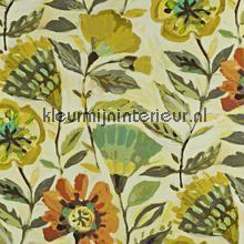 Fandango Pineapple rideau Prestigious Textiles stress