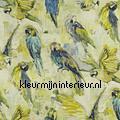 Macaw Mojito styles