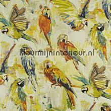 Macaw Rainforest cortinas Prestigious Textiles romántico