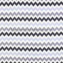 Graphix Anthracite tendaggio Prestigious Textiles ragazzi