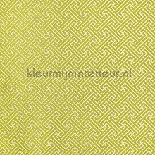 Key Lime cortinas Prestigious Textiles romántico