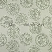 Mayan willow cortinas Prestigious Textiles todas as imagens