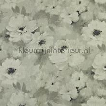 Verese natural rideau Prestigious Textiles romantique