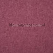 Oslo petunia cortinas Prestigious Textiles todas las imágenes