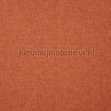 Oslo tango cortinas Prestigious Textiles todas las imágenes