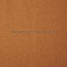 Oslo marmalade cortinas Prestigious Textiles todas las imágenes