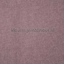 Oslo clover cortinas Prestigious Textiles todas las imágenes