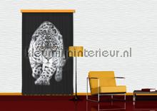 Panter zwart wit cortinas Kleurmijninterieur nuevas colecciones