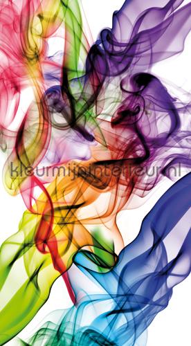 Liquid colours curtains FCS L 7514 teenager Kleurmijninterieur