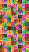 Colora cortinas Kleurmijninterieur meninos
