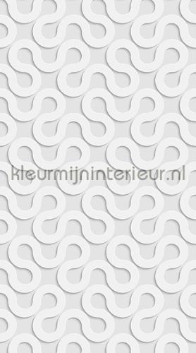 Abstract waves curtains FCS L 7571 teenager Kleurmijninterieur