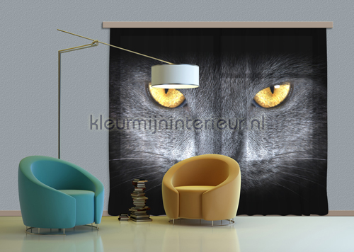 Black cat curtains FCS XXL 7410 teenager Kleurmijninterieur