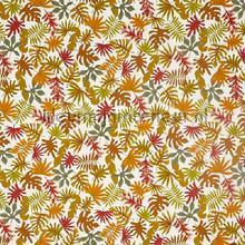 Dell autumn cortinas Prestigious Textiles campo