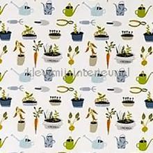 Planting out peapod vorhang Prestigious Textiles Pick N Mix 5073-661
