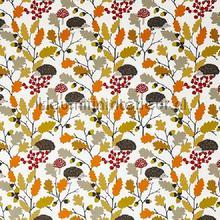 Prickly autumn curtains Prestigious Textiles all images