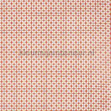 Zap coral curtains Prestigious Textiles teenager