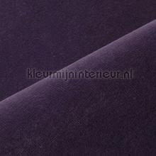 Velours cortinas Kobe lisos opacos