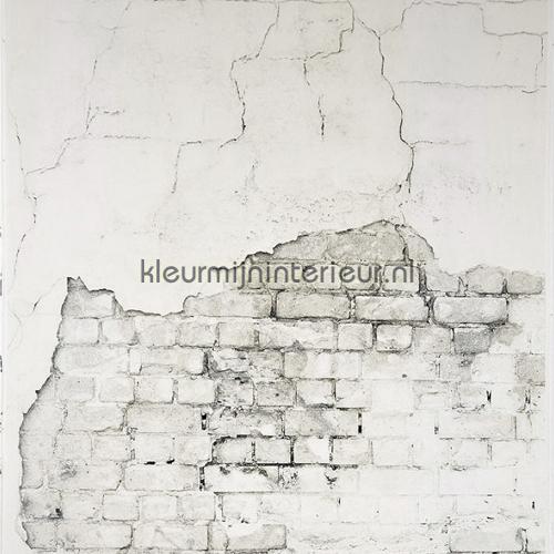 Wall gordijnpaneel gordijnen SCE 6598 0000 Gordijnstof Top 15 Caselio