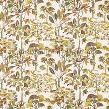 Lagoon papaya cortinas 8647-428 romántico Prestigious Textiles