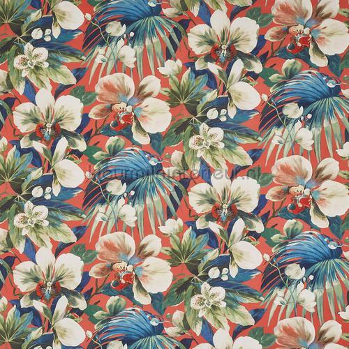 Moorea coral reef rideau 8648-432 fleurs Prestigious Textiles