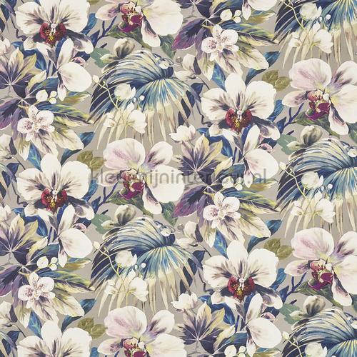 Moorea seaspray rideau 8648-656 romantique Prestigious Textiles