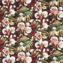 Moorea Passion Fruit vorhang Prestigious Textiles South Pacific 8648-982