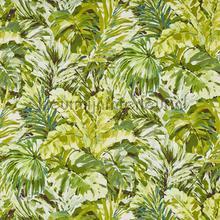 Palmyra Oasis vorhang Prestigious Textiles South Pacific 8649-162