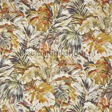 Palmyra papaya curtains Prestigious Textiles romantic