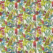 Tonga Oasis vorhang Prestigious Textiles South Pacific 8651-162