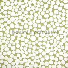 Fizzle Eucalyptus rideau Prestigious Textiles garçons