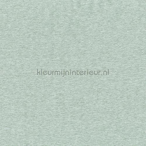Starshine Licht Turquoise gordijnen 434-152 Gordijnstof Top 15 Indes