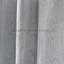 Timber Wit tendaggio Indes ragazzi