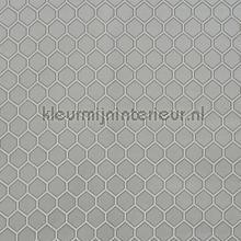 Eternity elephant curtains Prestigious Textiles Timeless 3685-942