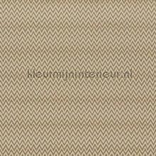 Everlasting satinwood cortinas Prestigious Textiles Timeless 3686-166