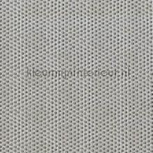 Limitless elephant cortinas Prestigious Textiles Timeless 3687-942
