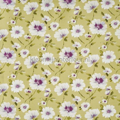 abbotsbury kiwi vorhang 3733-626 romantisch Prestigious Textiles