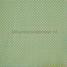Fenton canopy cortinas Prestigious Textiles todas as imagens